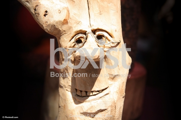 Tree Trunk Artwork with Funny Person Face.