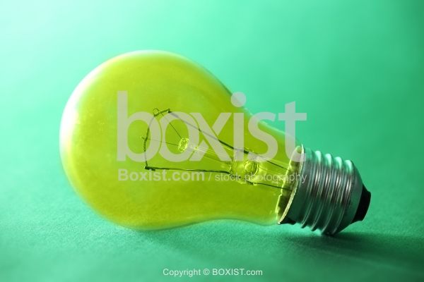 Bulb Lamp Lies on Green Background
