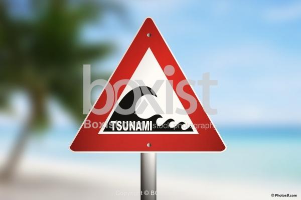 Tsunami Warning Sign on the Beach