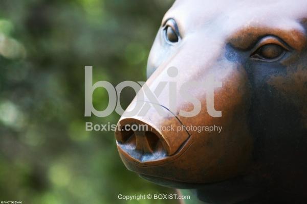 Bronze Sculpture of Bear Face