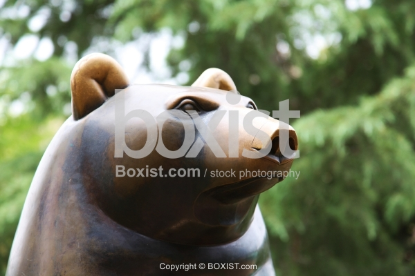 Bronze Sculpture of Bear Face and Head