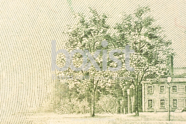 Trees on the Back of 100 Dollar Bill