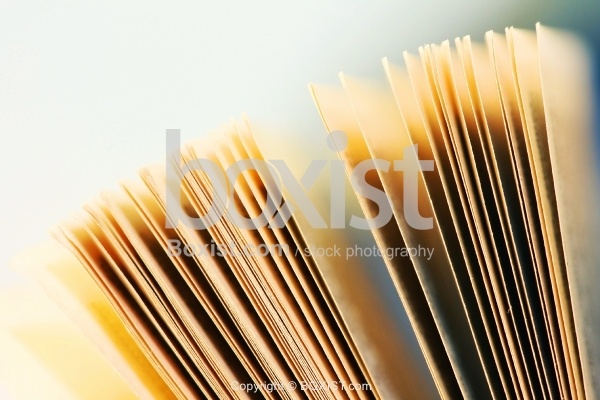 Lined Pages Standing