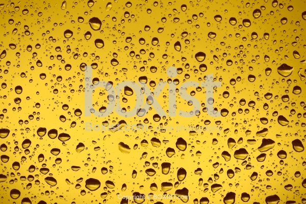 Golden Water Drops on Transparent Glass
