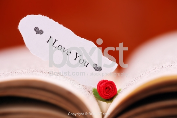 Torn Small Paper with I Love You Note