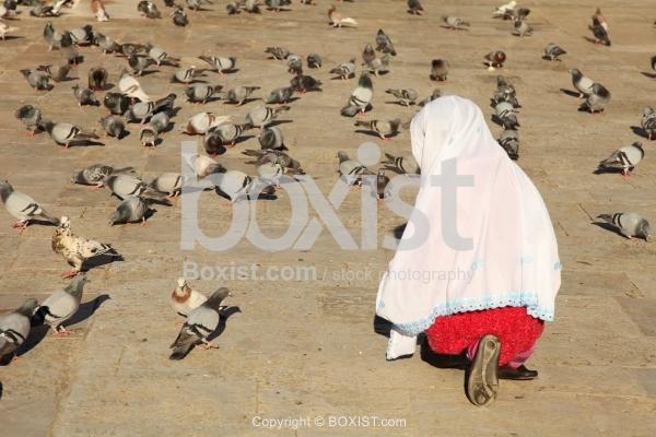 Muslim Girl Feeding Pigeons