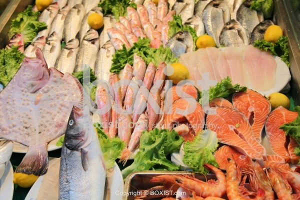Variety Of Fish And Sea Foods