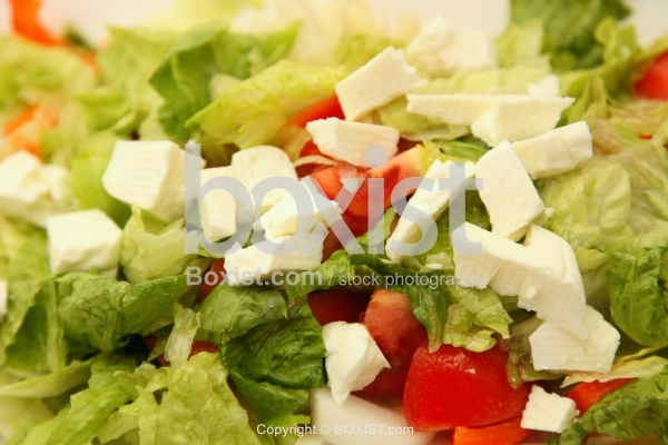 Vegetable Salad with White Cheese