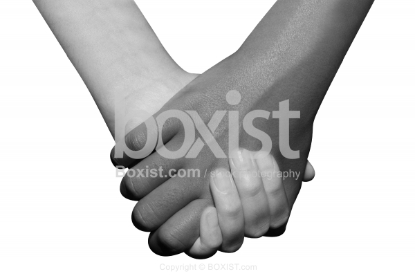 Black and White Hands Holding Together Isolated on White Background