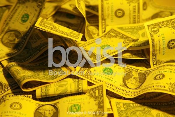 Dollars Notes Under Yellow Light
