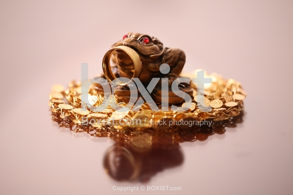 Feng Shui Money Frog With Golden Ring