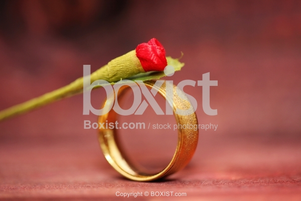Gold Ring And Small Rose