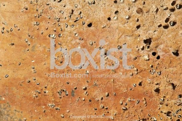 Orange Colored Stone Surface