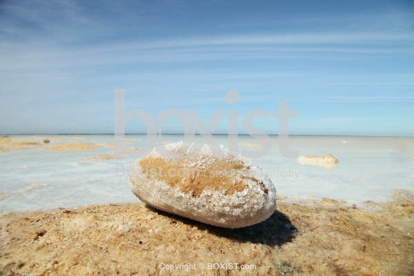 Rock with Salt At The Beach Of The Dead Sea
