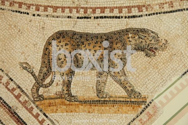 Walking Leopard Roman Mosaic