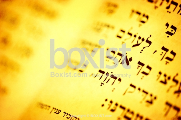 Bible Text In Hebrew