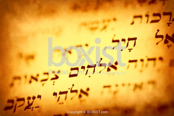 Hebrew Text From Hebrew Bible