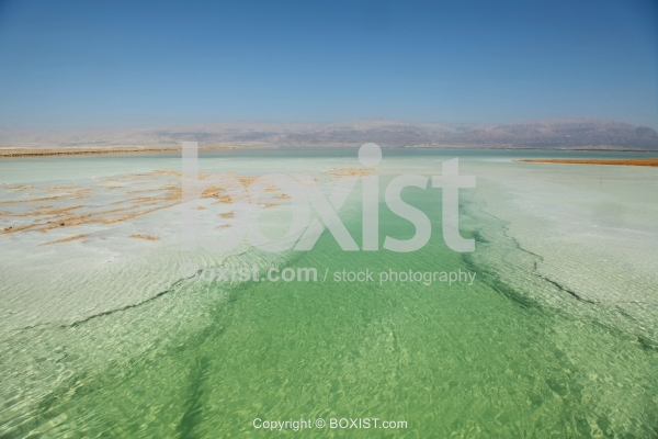 Salty Shores On Dead Sea