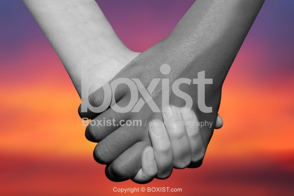 Black and White Hands Holding Together At Sunset