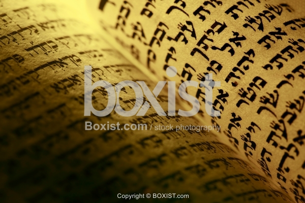Page Closeup From Hebrew Torah