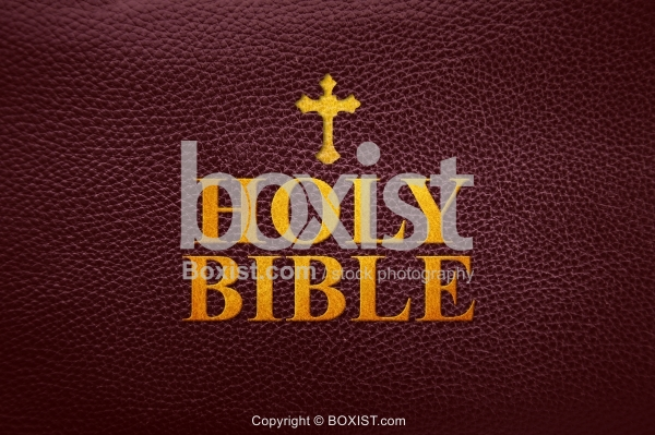 Holy Bible Leather Cover