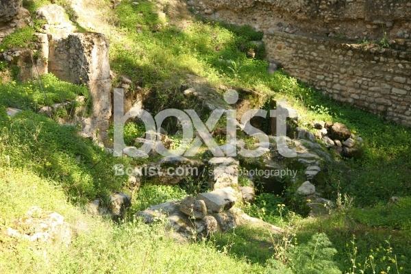 Ancient Ruins and Graves at Carthage