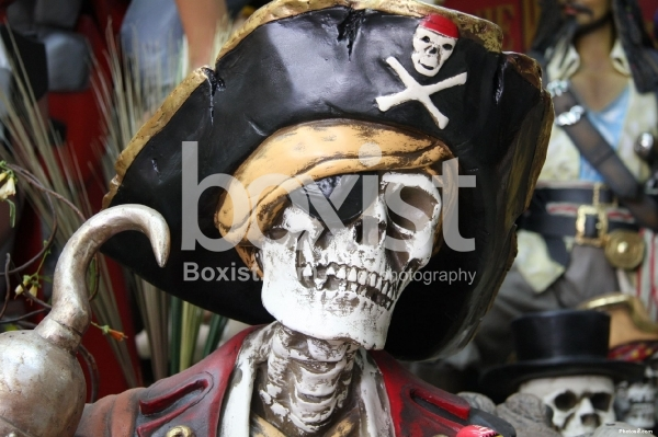 Portrait of Pirate Person with Hat