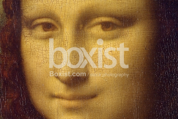 Closeup of Monalisa Face