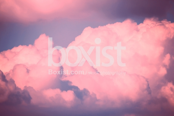 Pink Fluffy Clouds