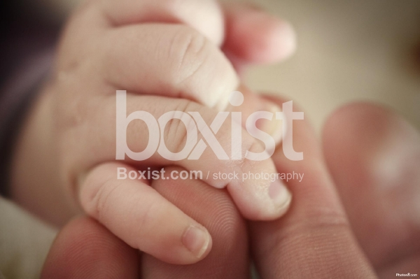 Holding Baby Fingers