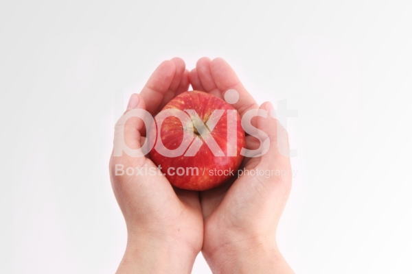 Holding Red Apple in Hand on White Background
